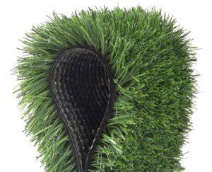 Grasss_1