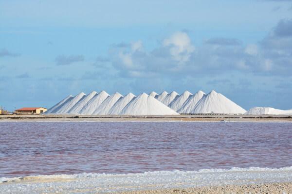 zoutpannen Bonaire