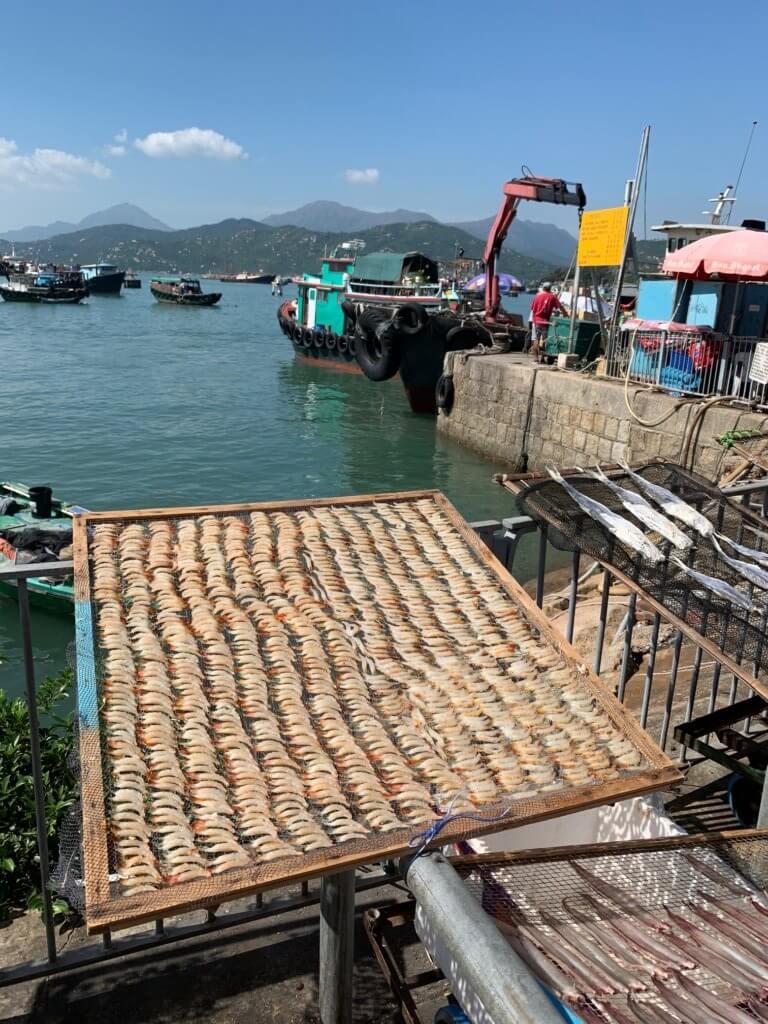 gedroogde vis op de kade van Cheung Chau